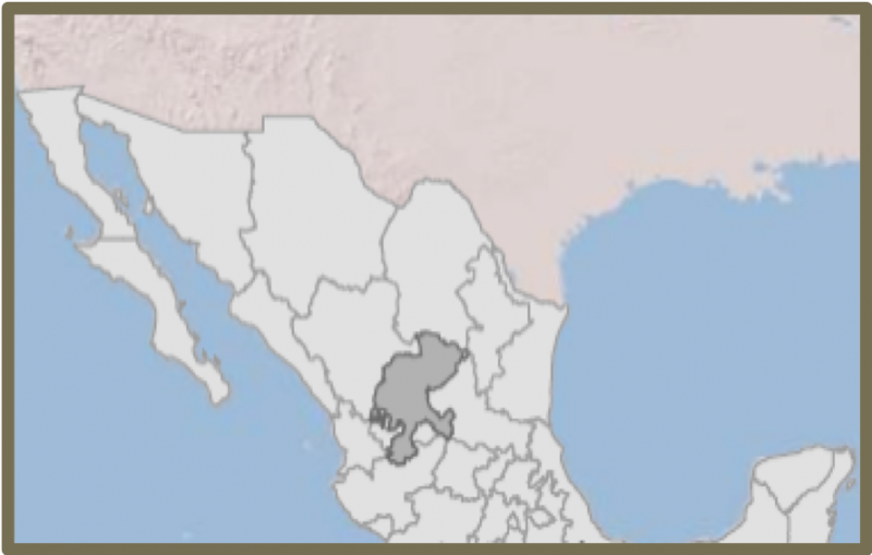 Map of Mexico showing Zacatecas in the middle