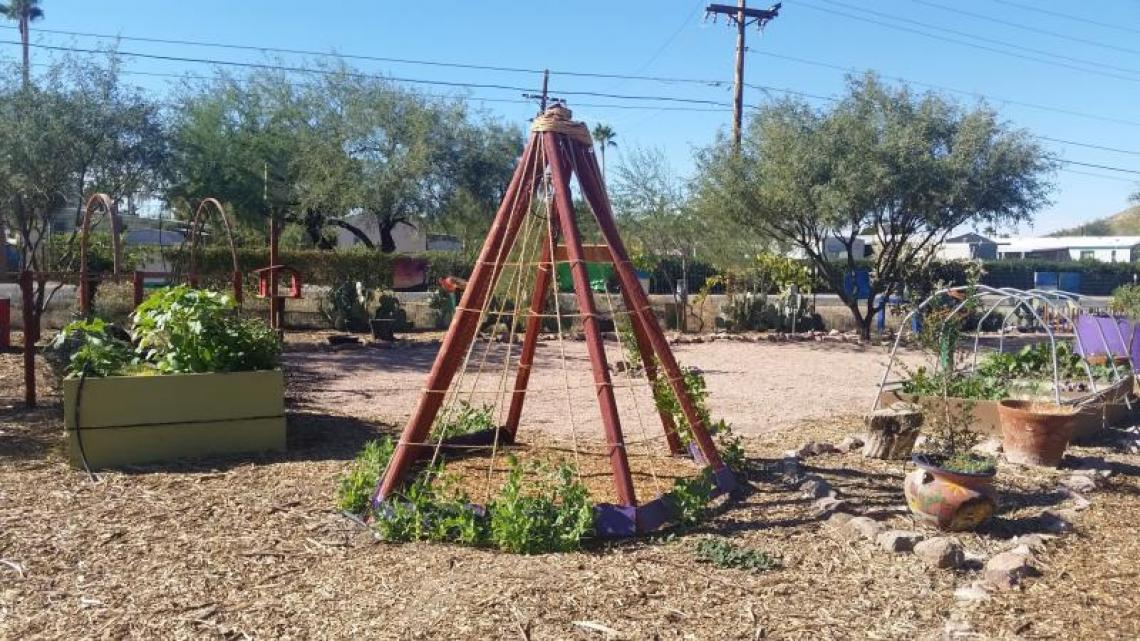 Las Milpitas Community Farm, Community Food Bank of Southern Arizona