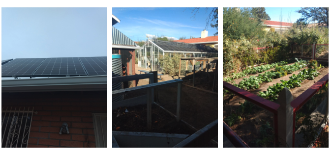 Solar panels, garden and greenhouse