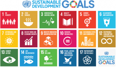 Grid of SDG goals with icons